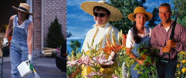 Domartis le service la personne comme personne for Service a la personne jardinage